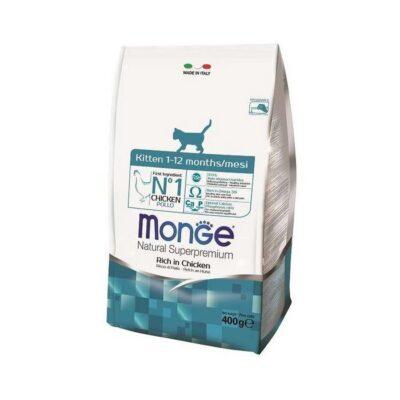 MONGE CAT KITTEN